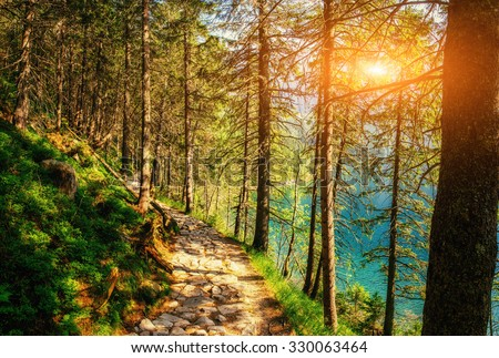 Sunset breaks between the trees. The trail in the mountains that goes near the water. Mountain Lake between mountains. Europe - stock photo
