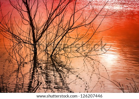 Sunset burning lake water reflection