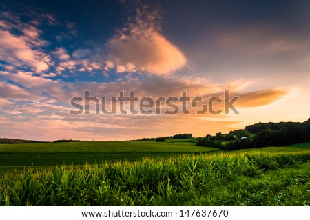 Sunset clouds over corn fields in rural Southern York County, Pennsylvania. - stock photo