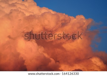 Sunset cloudscape. Red ornamental clouds - stock photo