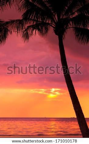 Sunset Divine Evening Scene  - stock photo