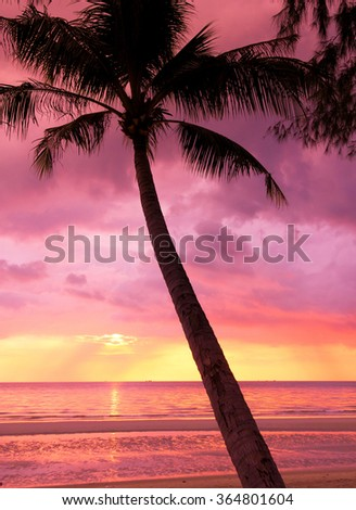 Sunset Divine Evening Scene  - stock photo