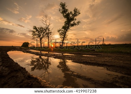 Sunset field puddle tree