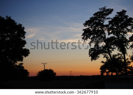 Sunset forrest - stock photo