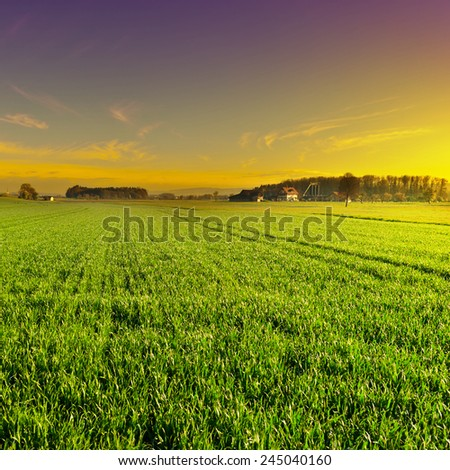 Sunset High Up in the Swiss Alps - stock photo