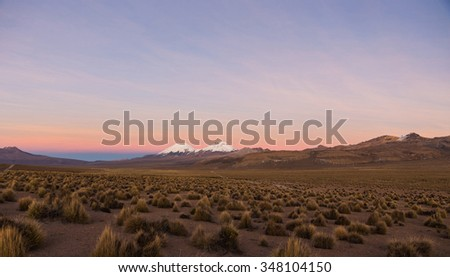Sunset in Andes. Parinacota and Pomerade volcanos. High Andean landscape in the Andes. High Andean tundra landscape in the mountains of the Andes.  - stock photo