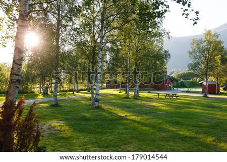 Sunset in camping. Sun rays lighting the camping through birch leaves, Norway - stock photo