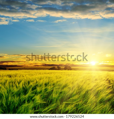 sunset in clouds over green field - stock photo