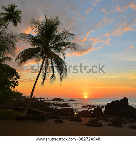 Sunset in Corcovado National Park, Costa Rica. - stock photo