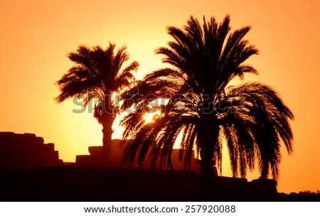 Sunset in Egipt. - stock photo