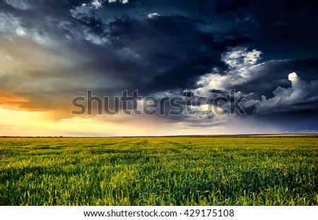 sunset in green field, summer landscape, bright colorful sky and clouds as background
