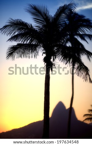 Sunset in Rio de Janeiro Ipanema Beach Brazil with Two Brothers Dois Irmaos Mountain and palm tree silhouette - stock photo