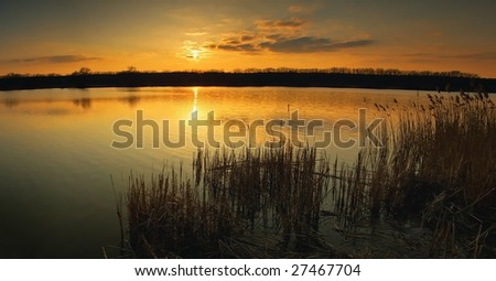 Sunset in rushes