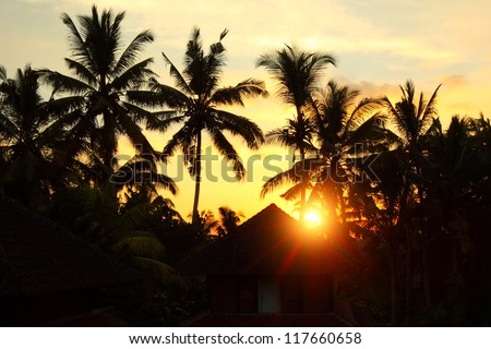 Sunset in tropical area with silhouettes of a palm trees - stock photo