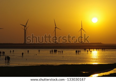 Sunset in wind power wetlands. In Taiwan Taichung Gaomei wetlands.