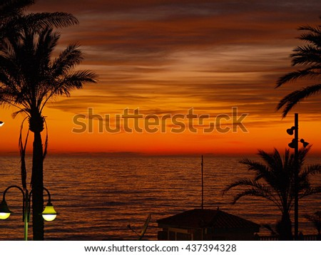 sunset in winter with sea and palm trees