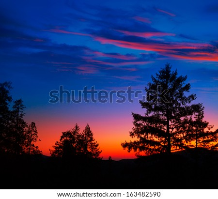 Sunset in Yosemite National Park with tree silhouettes at California USA - stock photo