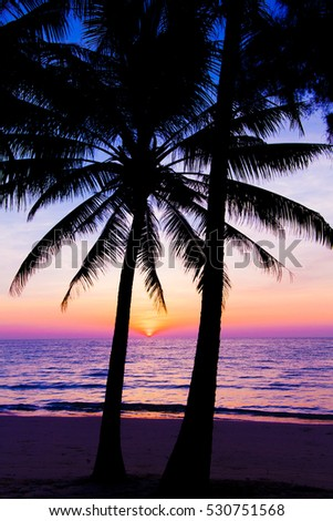 Sunset Landscape Beach Palm Trees Silhouette On Tropical