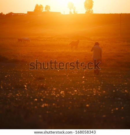 Sunset landscape in the countryside with human silhouette and horses