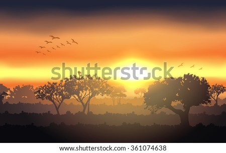 sunset landscape with tree silhouette. Raster version  - stock photo