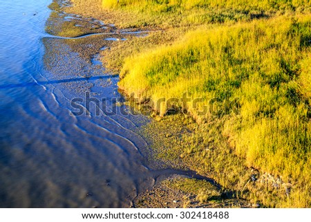 sunset light over river and beach with grass  - stock photo