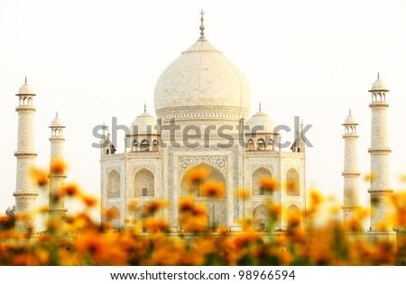 Sunset light over Taj Mahal in India, Agra, Uttar Pradesh - stock photo