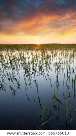 Sunset on lake in summer time. Beautiful natural landscape - stock photo