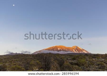 Sunset on Mount Kilimanjaro in Tanzania, Africa. - stock photo