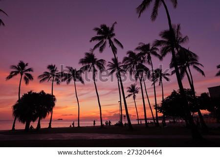 Sunset on the beach - stock photo