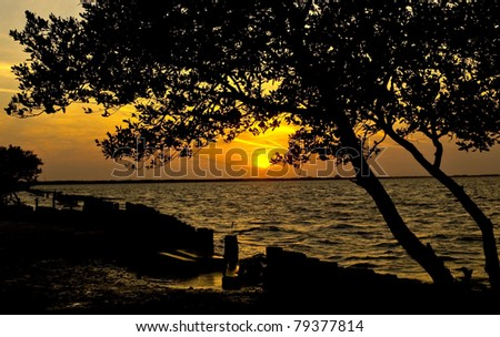Sunset on the beach in Tampa, Florida - stock photo