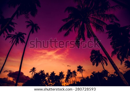 Sunset on the beach. Resort. Background