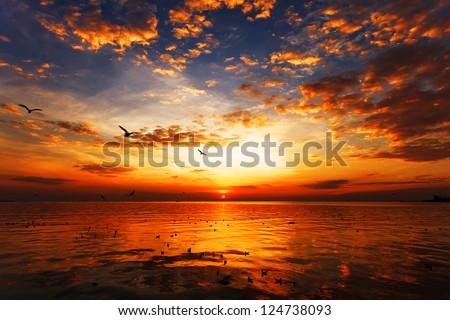 stock photo sunset on the beach with beautiful sky 124738093 - Каталог — Фотообои «Закаты, рассветы»