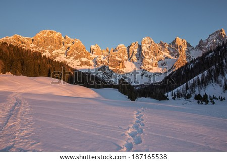 Sunset on the Dolomites.  Venegia valley.  Region Trentino.  Italy.  You can see the typical color of the alplenglow. - stock photo