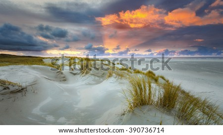 Sunset on the island of Texel with dunes and dune grass with a wide beach below. - stock photo