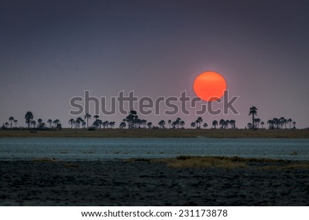 Sunset on the Kalahari - stock photo