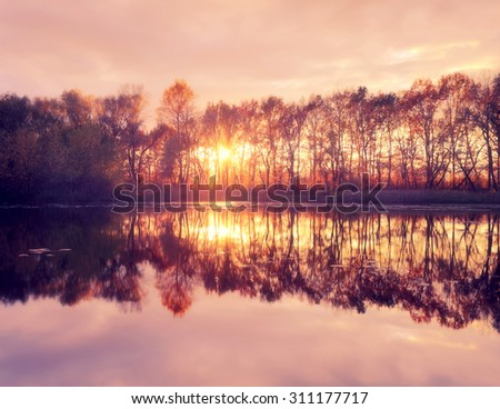 Sunset on the river. Sunlight between the trees with reflection in calm water