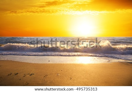 Sunset on the summer beach. Nature composition