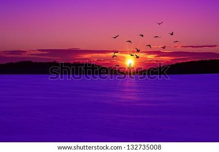 Sunset on the winter field - stock photo