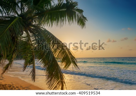 sunset on tropical anse georgette tropical beach in praslin island seychelles - stock photo