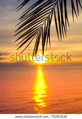 Sunset Outdoor Beach - stock photo