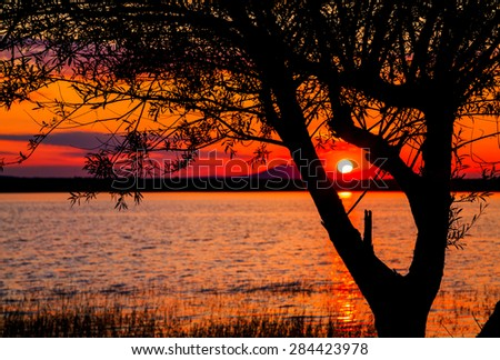 Sunset over a lake with a part of tree in the foreground, lake Rabisha, Bulgaria.