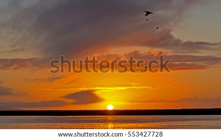 Sunset over Berg River with birds flying past, Western Cape, South Africa