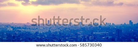 Sunset over Cairo with silhouettes of flying birds and Egyptian pyramids on a horizon. Mystical cityscape of Egypt - panorama of modern Cairo with flocks of pigeons flying in rays at sundown.