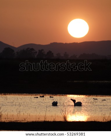 Sunset over California wildlife preserve - stock photo