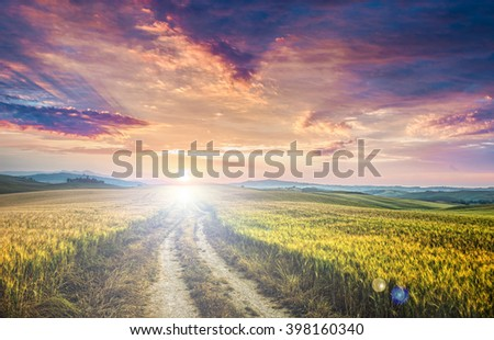 sunset over dirt road in wheaten field - stock photo