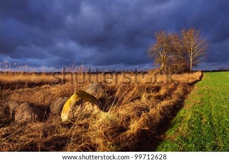 Sunset over fields - stock photo