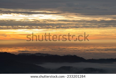 sunset over foggy valley in black forest, Germany  - stock photo
