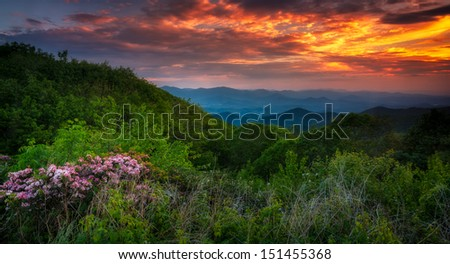 Sunset over Georgia mountains, spring colors and flowers,  - stock photo
