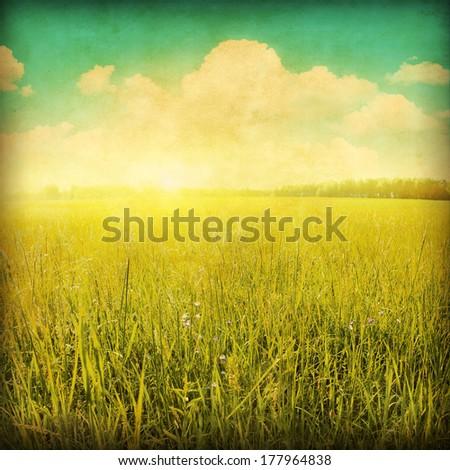 Sunset over green grass field. Grunge style photo. - stock photo