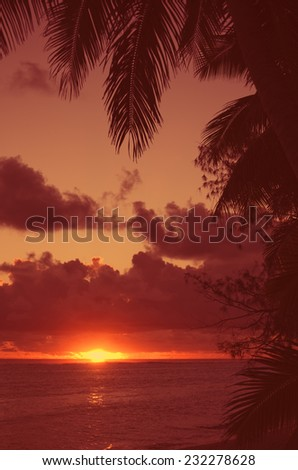 Sunset over Lagoon framed from Coco Palms - Rarotonga, Cook Islands, Polynesia - stock photo